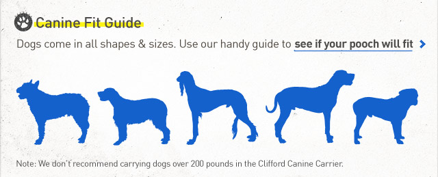 Canine Fit Guide.